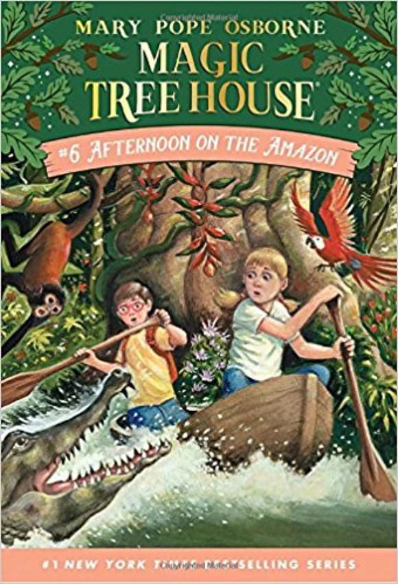 Полдень на Амазонке (Волшебный дом на дереве — 6)