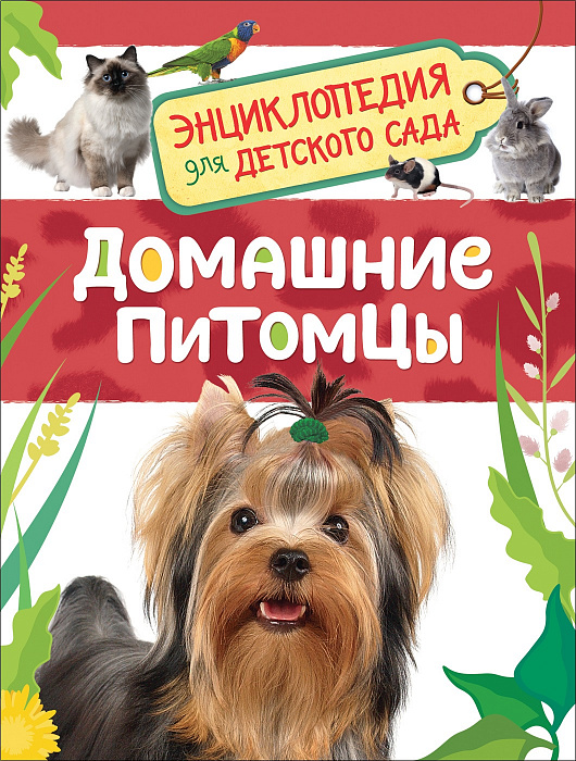 Домашние питомцы. Энциклопедия для детского сада.