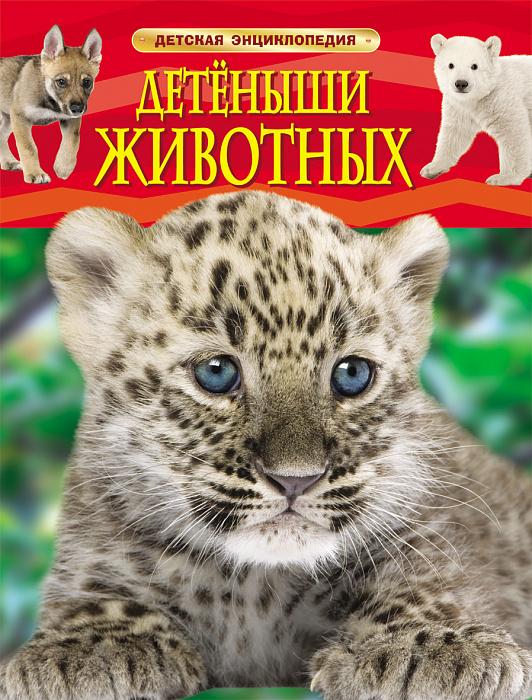 Детеныши животных. Детская энциклопедия. Детская энциклопедия